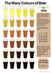 BeerColourInfographic.jpg